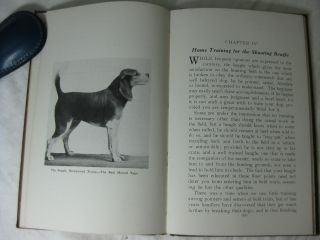BEAGLES AND BEAGLING