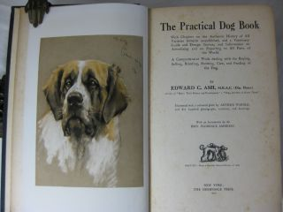 THE PRACTICAL DOG BOOK With Chapters on the Authentic History of All Varieties hitherto unpublished, and a Veterinary Guide and Dosage Section, and Information on Advertising and on Exporting to All Parts of the World.
